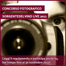 regolamento del concorso fotografico sorgentedelvino live 2011