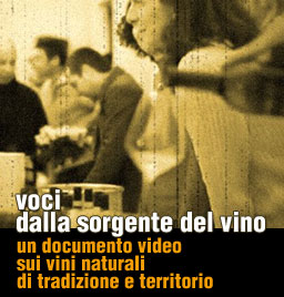 voci dalla sorgentedelvino, video documento